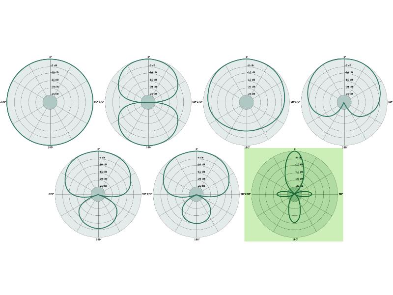lobar microphone pattern featimg